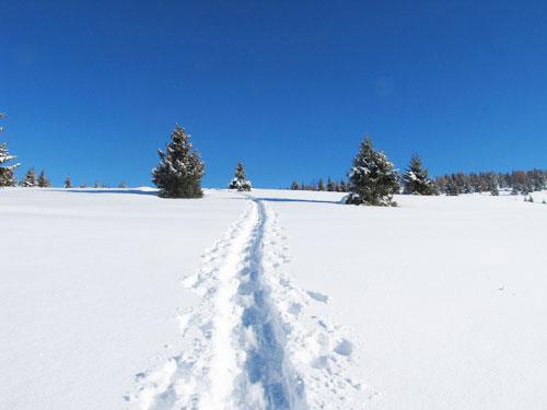 Valloire randonn es raquettes neige le bout du monde - La poutre valloire ...